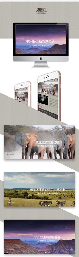 2017事业单位网站设计案例,非洲野生动物基金会网站制作案例