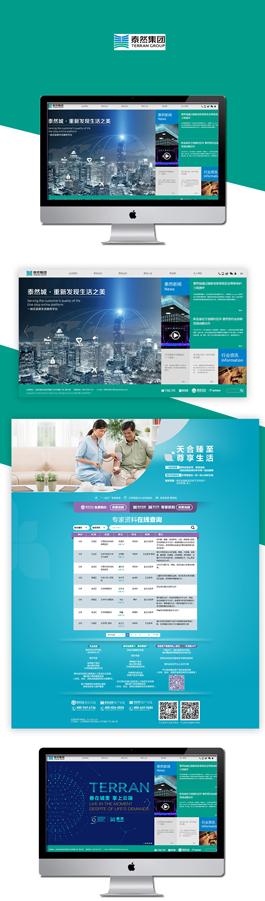 2017集团网站建设案例,泰然集团网站设计案例